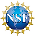 logo_nsf1